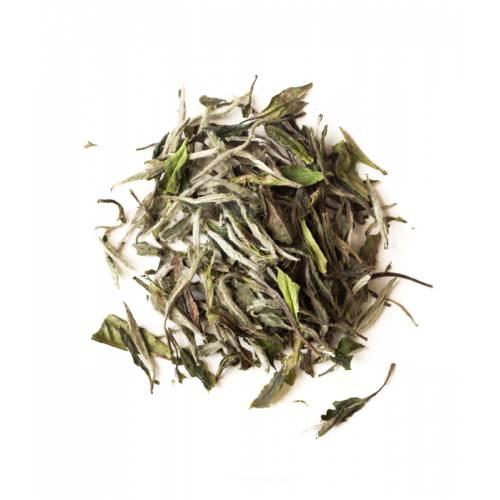Théière Bambou 430 ml
